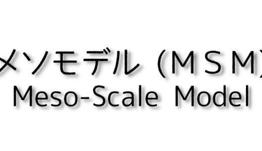 メソモデル (MSM)