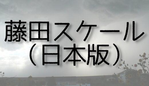藤田スケール(日本版)