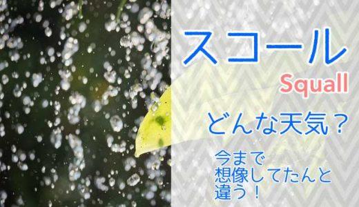 【スコールとはどんな天気?】雨ではなく風のことだった?!