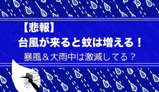 【悲報:台風が来ると蚊は増える】暴風&大雨中は激減してる?